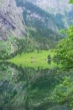 Obersee湖的伟大的夏天全景 瑞士阿尔卑斯绿色早晨场面, Nafels村庄地点,瑞士,欧洲 beauvoir 图库摄影