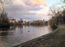 Obersee Στοκ φωτογραφία με δικαίωμα ελεύθερης χρήσης