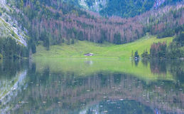 Obersee Landscape, Bavarian Scenery Royalty Free Stock Photo