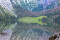 Obersee Landscape, Bavarian Scenery Royalty Free Stock Image