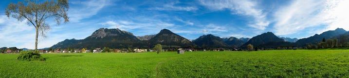 Oberstdorf z zielonymi polami Zdjęcie Royalty Free