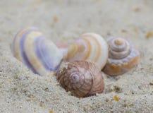Oberteile auf dem Sand Lizenzfreies Stockfoto