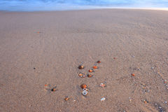 Oberteile auf dem Strand Stockbild