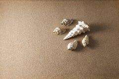 Oberteile auf Sand Lizenzfreie Stockbilder
