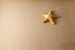 Oberteile auf Sand Stockfotografie