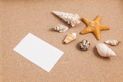 Oberteile auf Sand Stockbilder