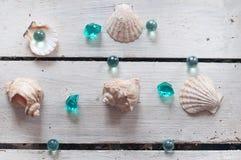 Oberteile, Perlen, Meer, Hintergrund, weißer Hintergrund, hölzerner Hintergrund, Seeoberteile lizenzfreie stockbilder