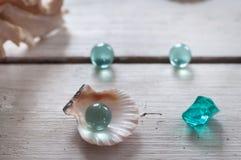 Oberteile, Perlen, Meer, Hintergrund, weißer Hintergrund, hölzerner Hintergrund, Seeoberteile lizenzfreies stockbild