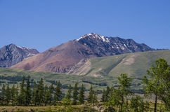 Oberteile Schnee von Bergen Stockbilder