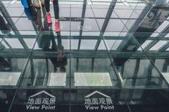 Obervatório da construção do centro financeiro de mundo de Shanghai Imagem de Stock Royalty Free