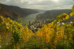Oberwesel Royalty Free Stock Photo