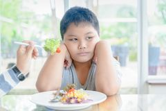 Obese boy with expression of disgust against vegetables. Anorexia, obese fat boy with expression of disgust against vegetables, Refusing food concept Royalty Free Stock Images