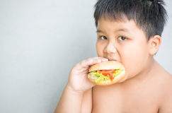 Obese fat boy child eat chicken hamburger Stock Images