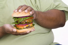 An Obese Man Holding Hamburger. Mid section of an obese African American men holding hamburger isolated over white background Royalty Free Stock Photography