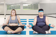 Obese people meditating in the class yoga Royalty Free Stock Photo