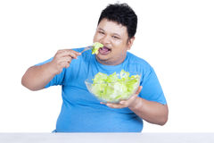 Obese person eats salad for diet Royalty Free Stock Image