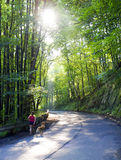 Obese young woman with dog on road Stock Photo