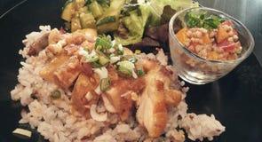 Obesidad que gana/pollo, arroz y ensalada Imagen de archivo libre de regalías