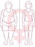 Obesidad y mujeres Imágenes de archivo libres de regalías