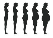 Obesidade ilustração stock