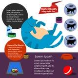 Obesidade do gato Imagem de Stock