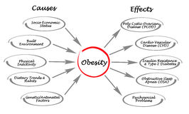 Obesity: causes and effects. Diagram of Obesity: causes and effects Royalty Free Stock Photos