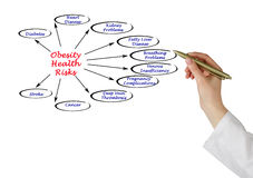 Obesity Health Risks. Presenting diagram of Obesity Health Risks Royalty Free Stock Images