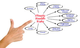 Obesity Health Risks. Presenting Diagram of Obesity Health Risks Stock Photos