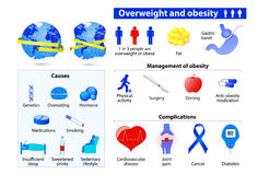 Obesity and overweight infographic. stock illustration
