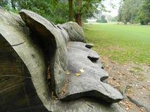 Obfitolistna ławka Zdjęcie Royalty Free