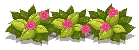 Obfitolistny krzak z kwiatami royalty ilustracja