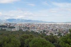 Obfitolistny Palma widok Zdjęcie Royalty Free