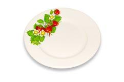 Obiadowy talerz. Obrazy Stock