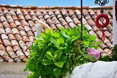 Obidos w Portugalia, zdjęcia stock