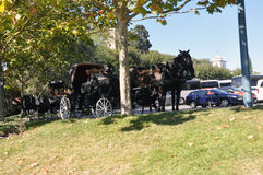 Obidus, Portugalia Obrazy Royalty Free