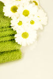 obietnicy wiosna Obraz Stock
