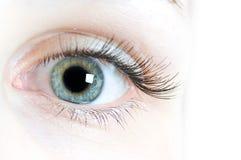 Obiettivi di contatto per gli occhi Immagine Stock