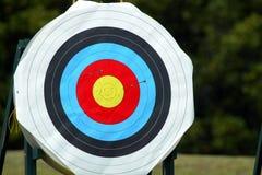 Obiettivo 53 di tiro all'arco Fotografie Stock Libere da Diritti