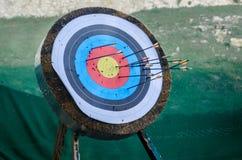 Obiettivo della freccia Fotografia Stock
