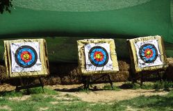 Obiettivo di tiro con l'arco in parco Fotografia Stock Libera da Diritti