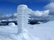 objętych śnieg Obrazy Royalty Free