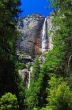 objętych Yosemite Obrazy Royalty Free