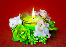 Candle and flowers. Still-life from candles and flowers Royalty Free Stock Photography