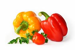 Pepper, parsley and a tomato. Still-life with pepper, parsley and a tomato Royalty Free Stock Photo