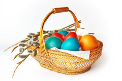 Easter basket. Basket with Easter eggs and a willow Stock Photo