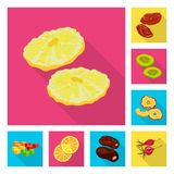 object of fruit and dried  icon. Set of fruit and food  vector icon for stock. Vector design of fruit and dried  symbol. Collection of fruit and food  stock vector illustration