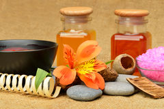 Object for the spa Stock Photography
