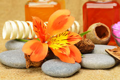 Object for the spa Stock Image