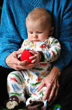 Object of Study. An infant sitting on a grandparents lap investigates a soft, round, red spherical object Royalty Free Stock Photos