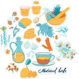 Objects and herbs to treat colds. Set of objects and herbs to treat colds Royalty Free Stock Photography